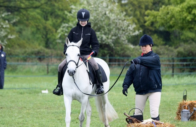 The Ultimate Guide To Launching A Riding School Business